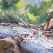 pike_riverrapids